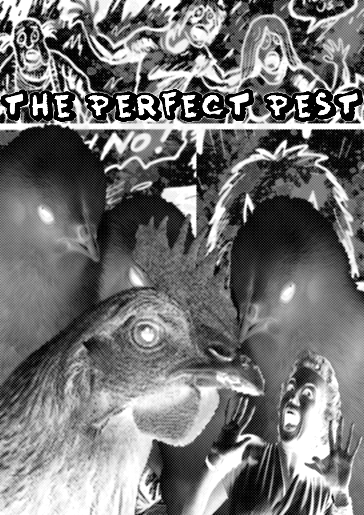 The Perfect Pest!-Main Cover